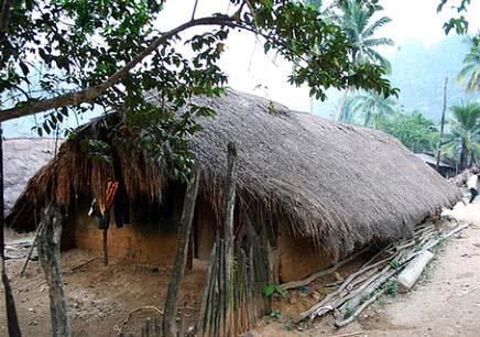 木头房子与独木崇拜