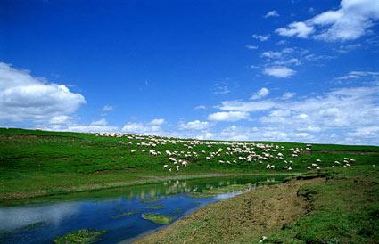 舟曲位于甘南藏族自治州南部