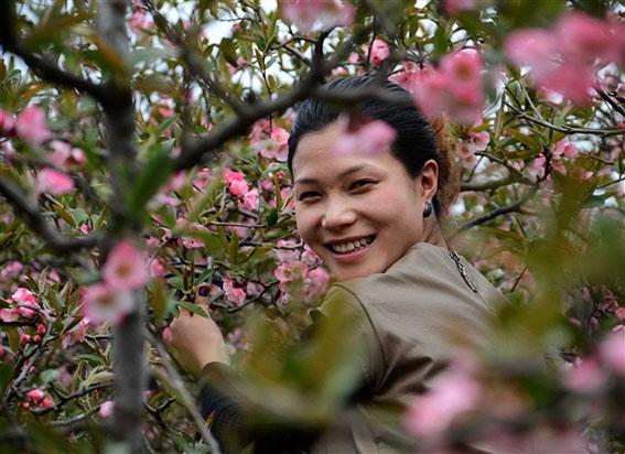 美女与木瓜花 中国民族宗教网