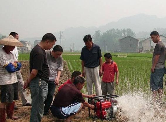 杭州野生动物世界张德全