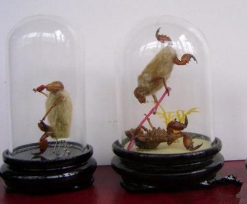 面塑制作小动物猴子