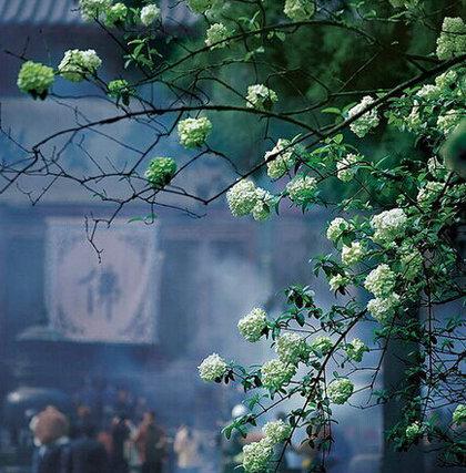 佛教与诗歌文化如影随形