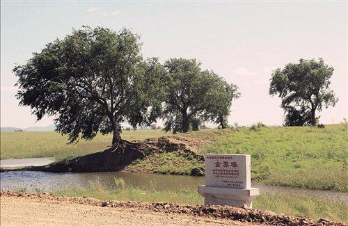兴安盟扎赉特旗金界壕遗址.-金界壕,遗落在草原上的文化印记