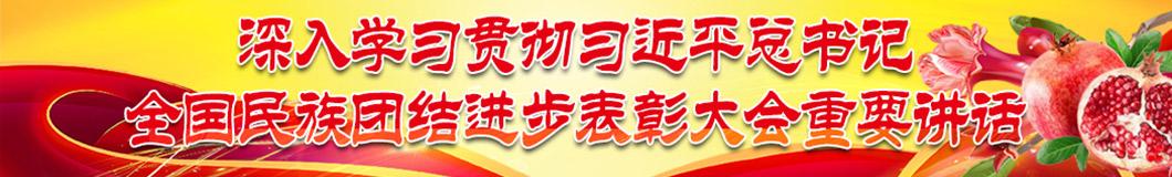 2019全國民族(zu)團(tuan)結進步表彰大會