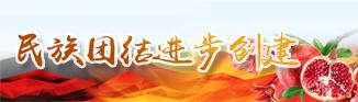 民族(zu)團(tuan)結進步創建